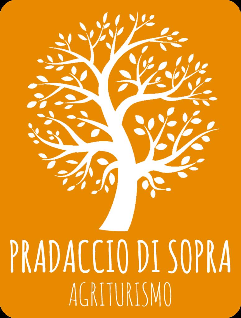 PRADACCIO_Logo-arancione_150